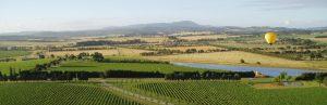 South World Wines importe et distribue des vins du monde. Spécialiste des vins étrangers en France. Retrouvez nos actualités.