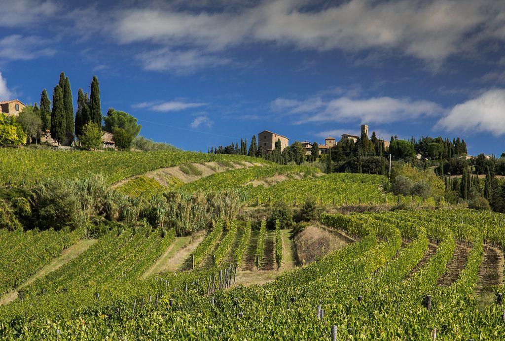 Volpaia Chianti Classico Italie vins étrangers Toscane