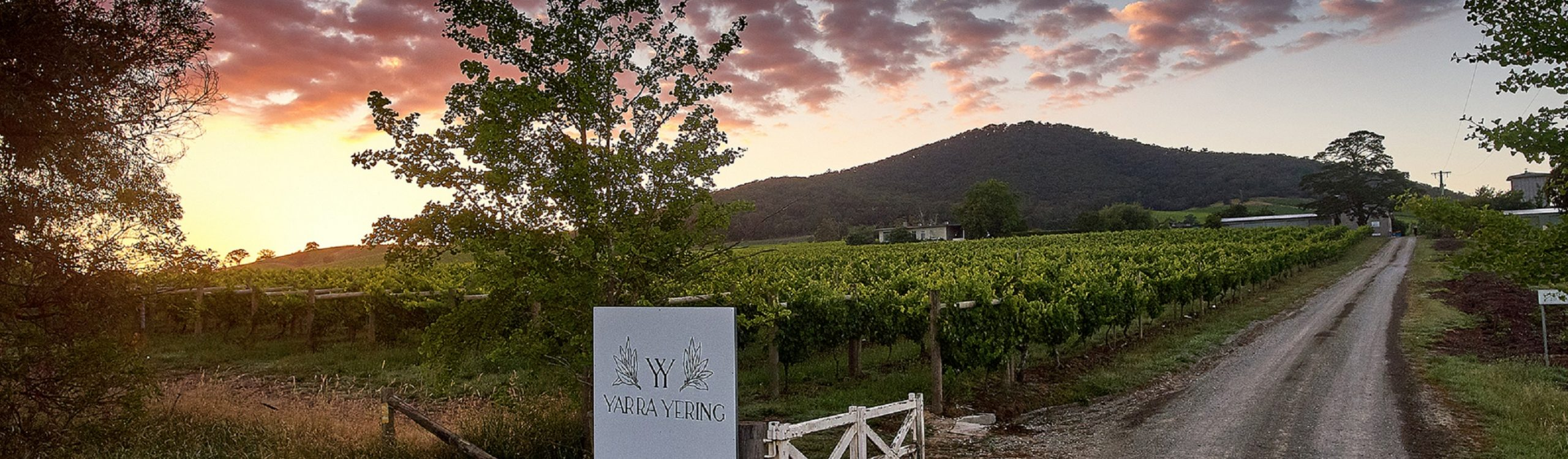 vins Australie yarra yering. South World Wines distribue les vins du monde en France
